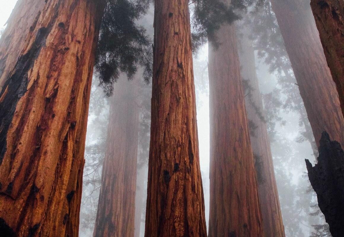 VisitCalifornia_Thumbnail